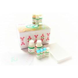 ELISA Kit FOR 17-Hydroxyprogesterone