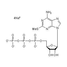 2-MeS-ATP tetrasodium