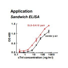 Rabbit anti-human cardiac Troponin I (cTnI) monoclonal antibody (clone 5L9)