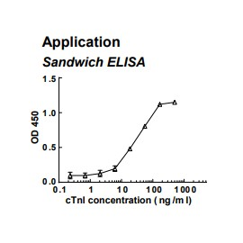 Rabbit anti-human cardiac Troponin I (cTnI) monoclonal antibody (clone 5D11)