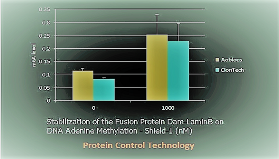 Protein Control by Shield-1